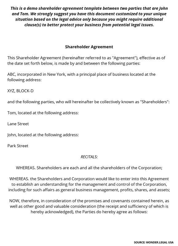 Shareholder Agreement Template-1