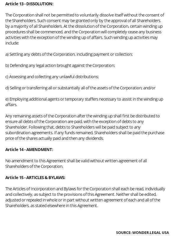 Shareholder Agreement Template article 13